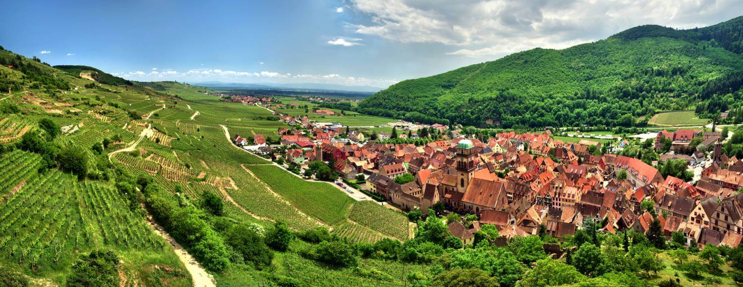 Alsace Wine Tours Amp Wine Tasting Holidays In The Alsace