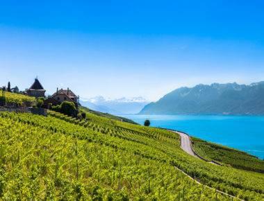 Vineyards of Switzerland
