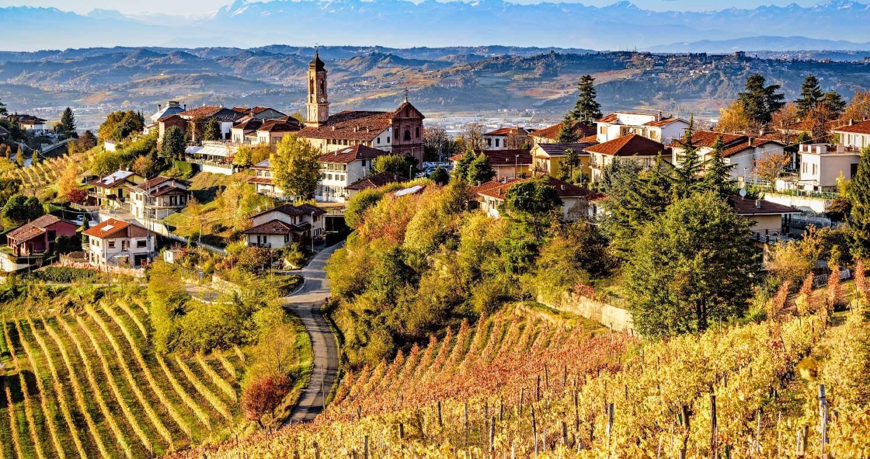 Piedmont Wine Experience Smoothred