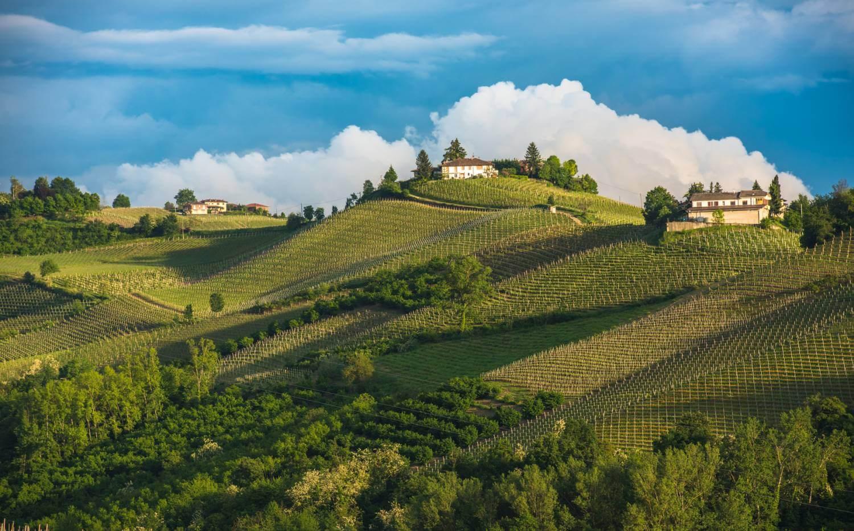 Piedmont Wine Tours Amp Wine Tasting Holidays In Piedmont