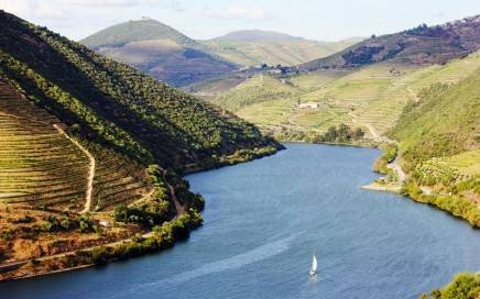 Sailing_through_Douro_River_[6104-LARGE] (1)